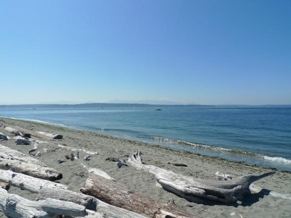 beachside2